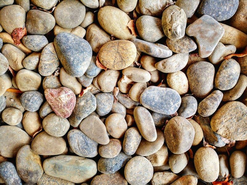 Piedra minúscula de la roca del primer imágenes de archivo libres de regalías