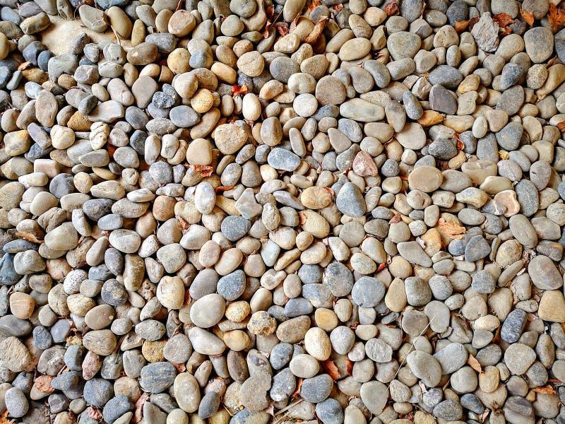 Piedra minúscula de la roca del primer imagen de archivo libre de regalías