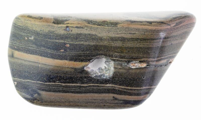 piedra pulida de la pizarra de la marga (marlstone) en blanco foto de archivo