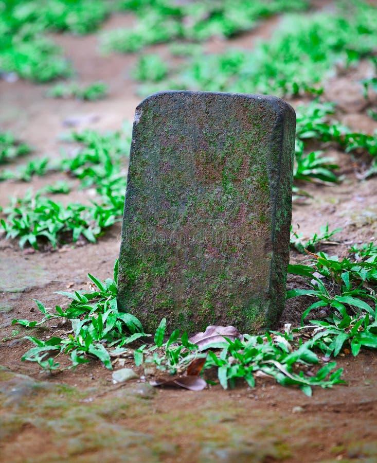 Piedra sepulcral para el sepulcro del animal doméstico foto de archivo