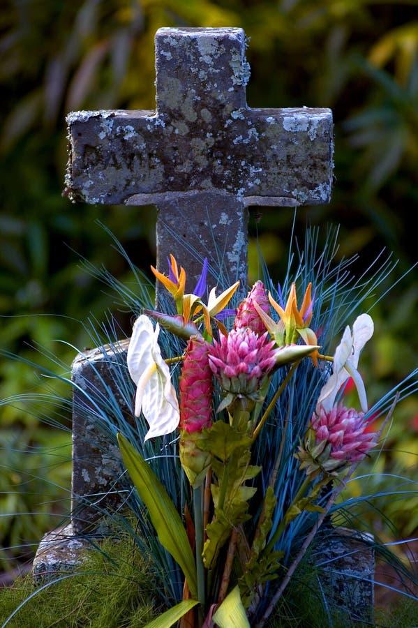 Piedra sepulcral tropical fotos de archivo