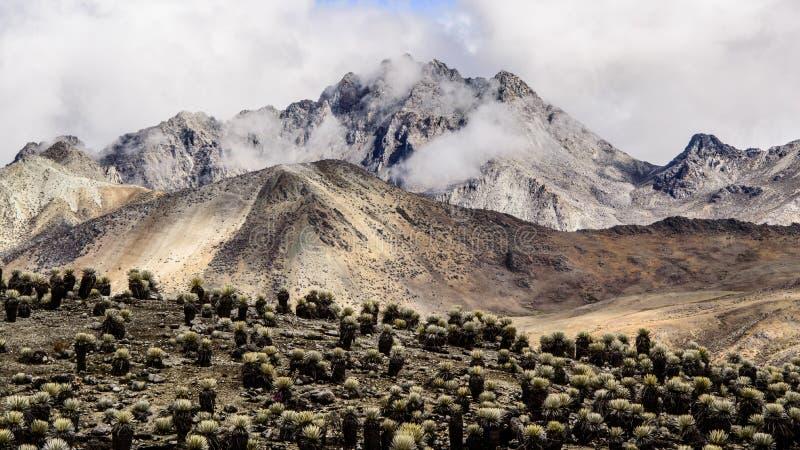 Piedras Blancas 2. Piedras Blancas, the highest peak in La Culata National Park stock photo