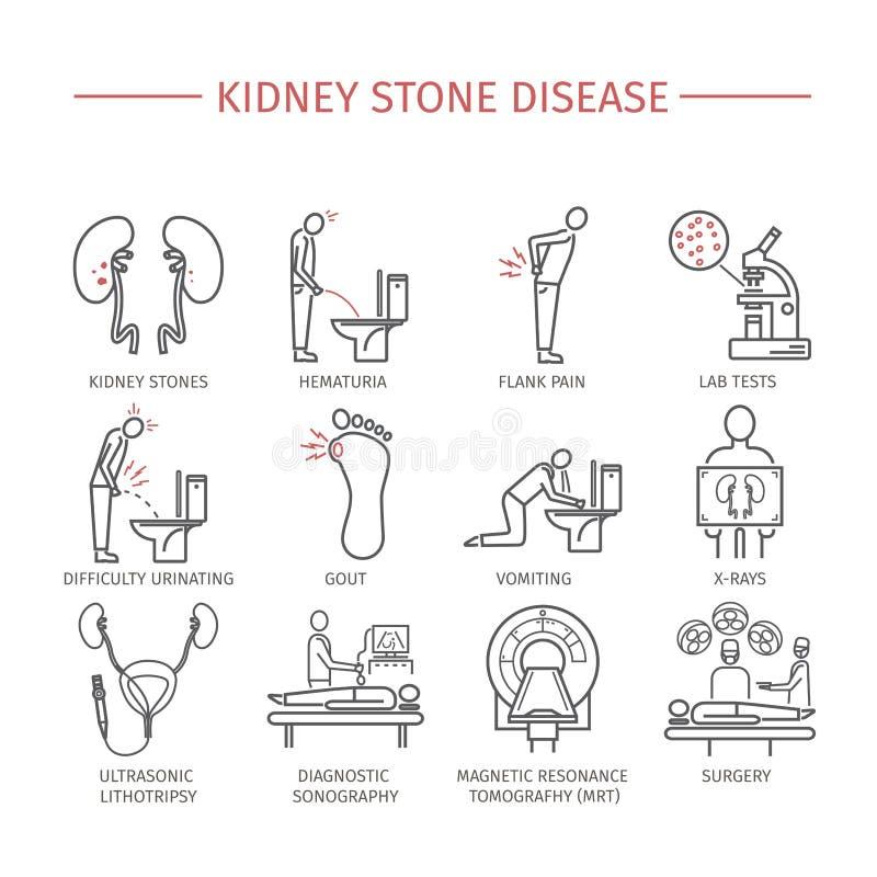 Piedras de riñón Línea iconos fijados ilustración del vector