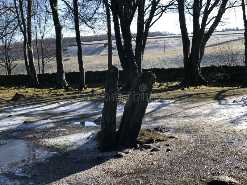 Piedras derechas en la nieve fotos de archivo libres de regalías