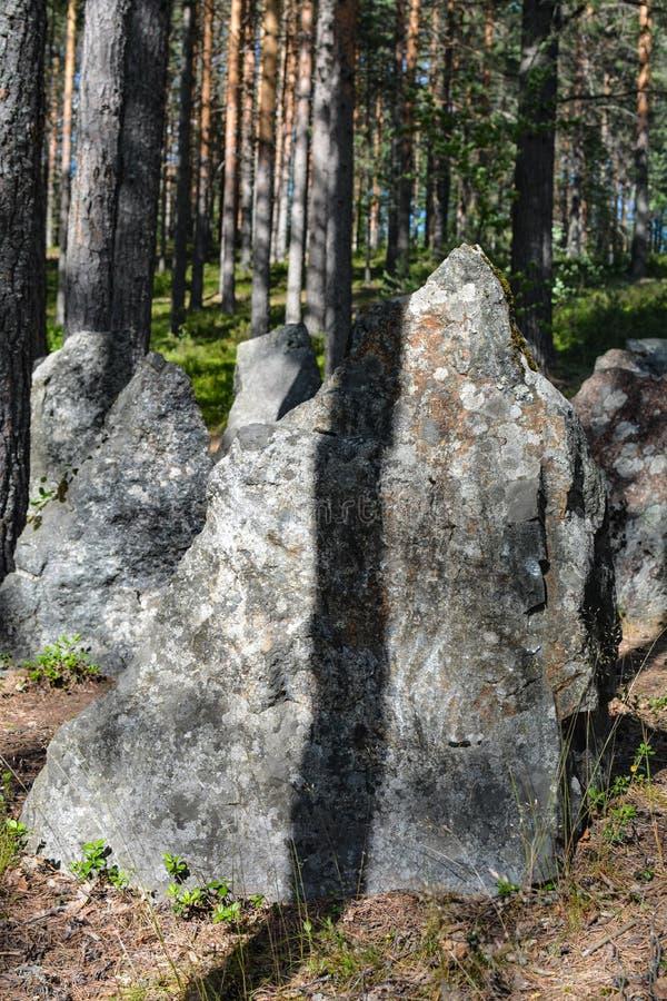 Piedras en la línea antitanques de la defensa de la Segunda Guerra Mundial, región de Leningrad, Rusia imagenes de archivo