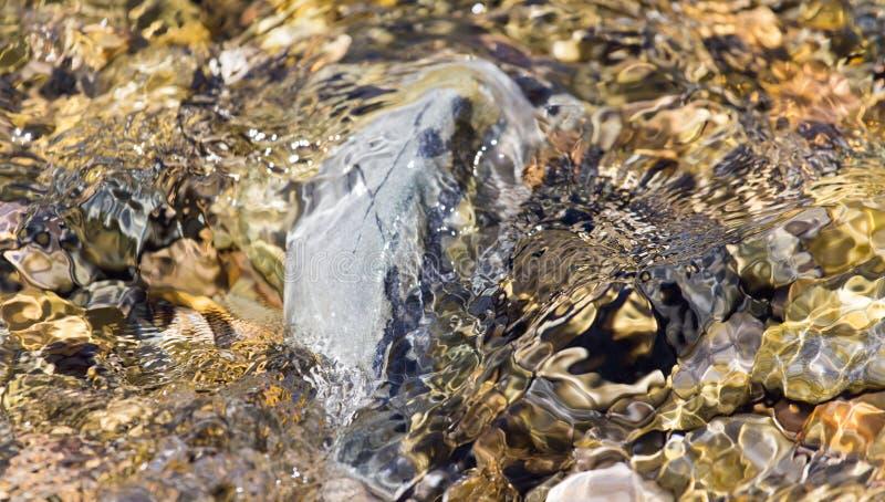 Piedras en naturaleza del agua foto de archivo