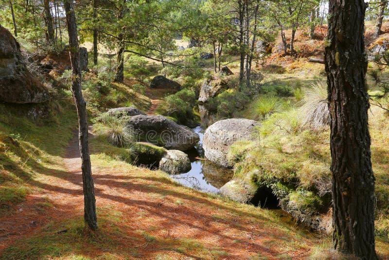 Piedras encimadas dolina IX zdjęcie stock