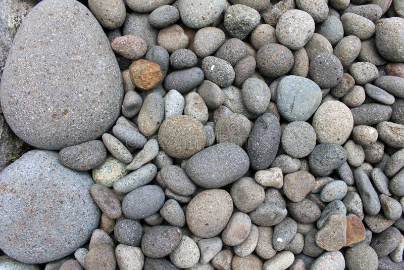 Piedras grandes entre guijarros más pequeños, en el jardín imágenes de archivo libres de regalías