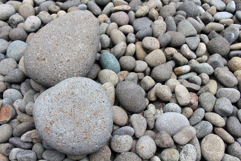 Piedras grandes entre guijarros más pequeños, en el jardín foto de archivo