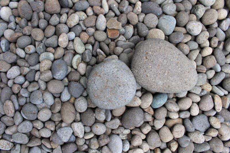 Piedras grandes entre guijarros más pequeños, en el jardín imagen de archivo
