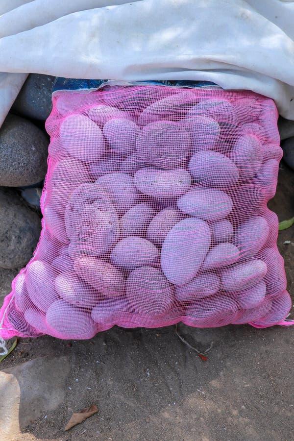 Piedras ovales en saco púrpura en la arena volcánica negra El mar trabajó los cantos rodados Material de construcci?n natural Pie fotografía de archivo