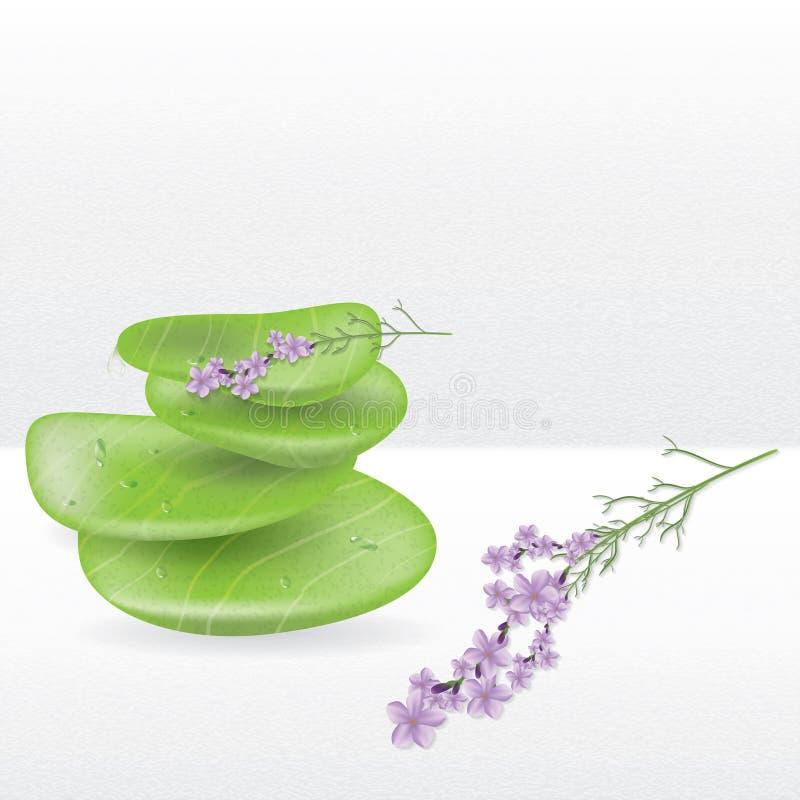 Piedras realistas del jade del balneario stock de ilustración