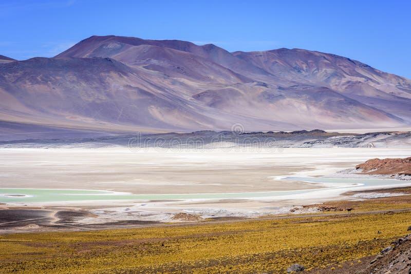 Piedras Rojas, Atacama, chile imagen de archivo