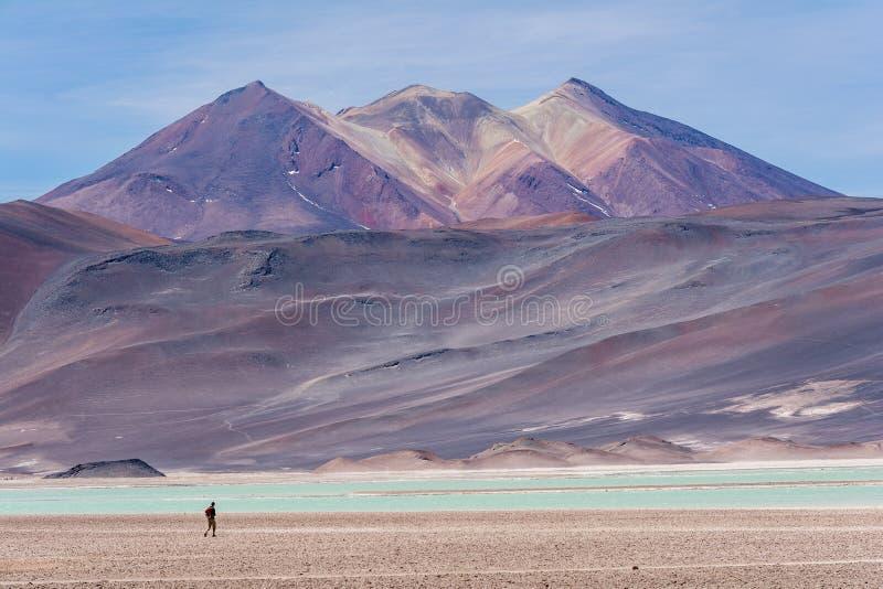 Piedras Rojas, vulkan, snö, berg, vaggar, sjön, vit sand, turkosvatten arkivbilder