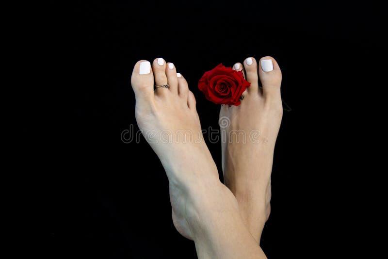 Pieds attirants de femme, beauté idéale classique avec l'orteil grec de ` de pied de `, laque blanche de clou, fond noir aux pied photos stock