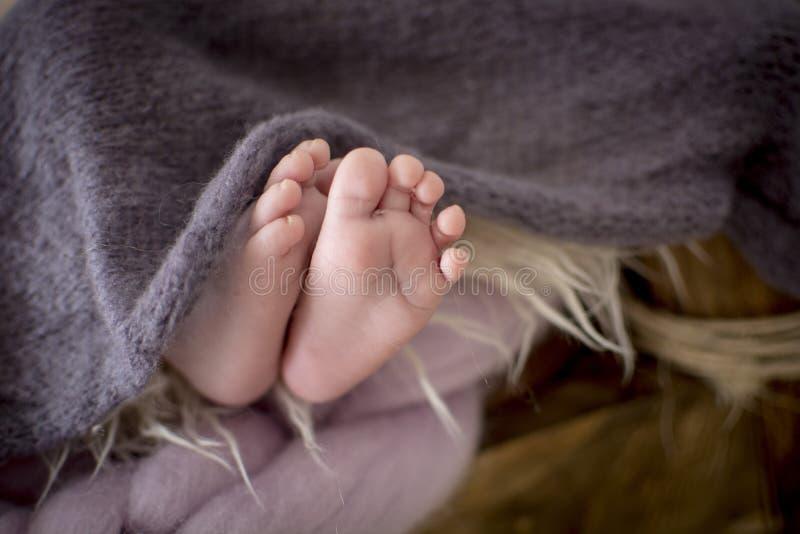 pieds de bébé entre la couverture grise images stock
