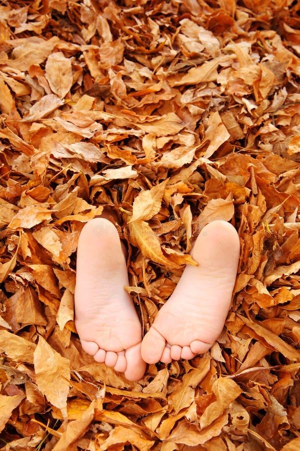 Pieds de Childs enterrés dans des lames d'automne photos stock