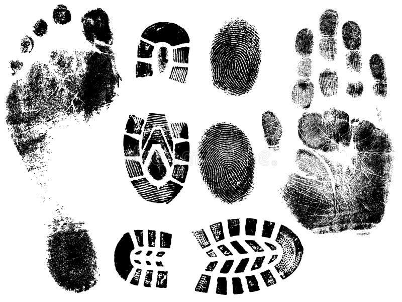 pieds de doigts illustration de vecteur