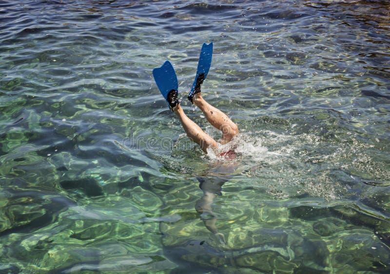 Pieds de plongeur en FIN au-dessus de la surface de la mer photo libre de droits