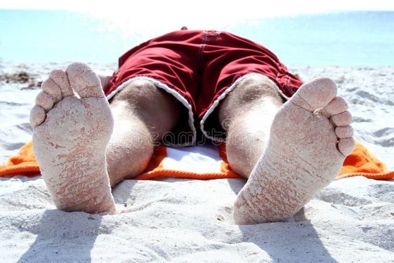 Pieds de Sandy image libre de droits