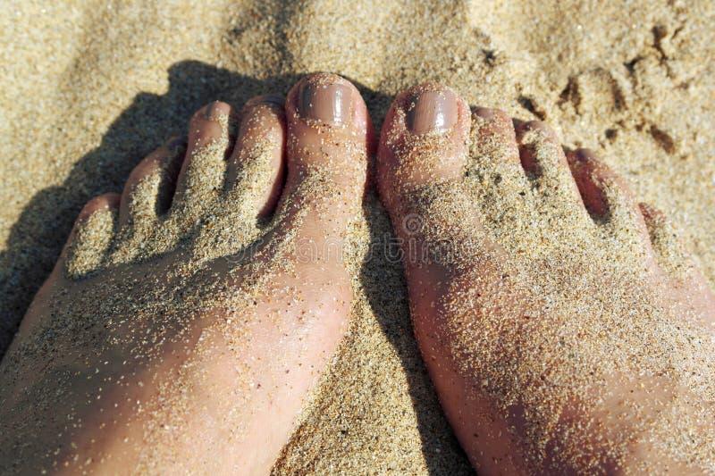 Pieds et orteils de Sandy photographie stock libre de droits
