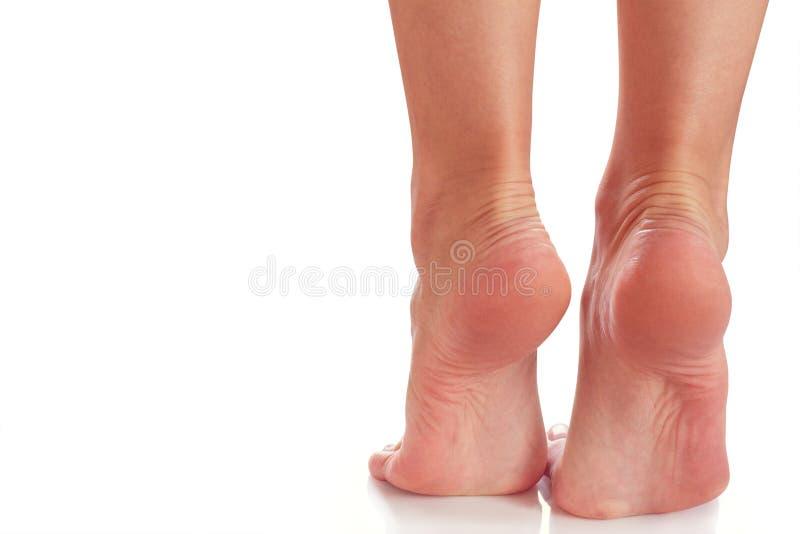 Pieds femelles de support sur des orteils image stock