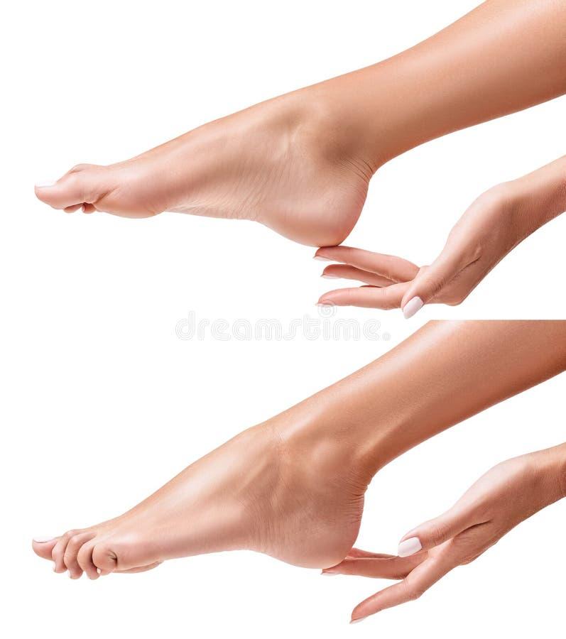 Pieds femelles parfaits La main touche la jambe élégante images stock