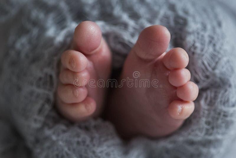 Pieds nouveau-nés de bébé sur la couverture bleue photo libre de droits
