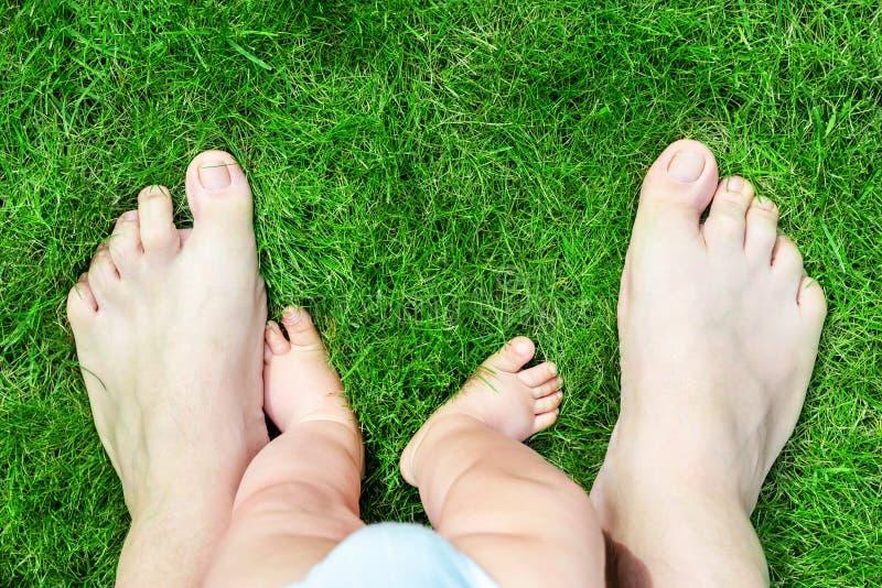 Pieds nus de père et de fils sur la pelouse d'herbe verte au parc Parent avec le bébé garçon faisant des premières étapes dans la images libres de droits