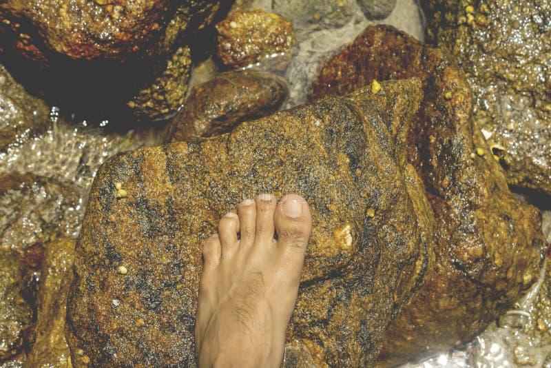 Pieds sur la roche photos stock