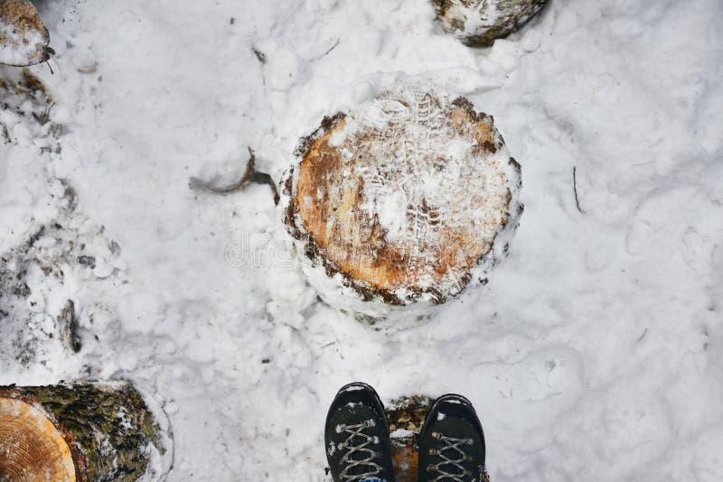 Pieds sur une cale en bois dans la forêt d'hiver photo libre de droits