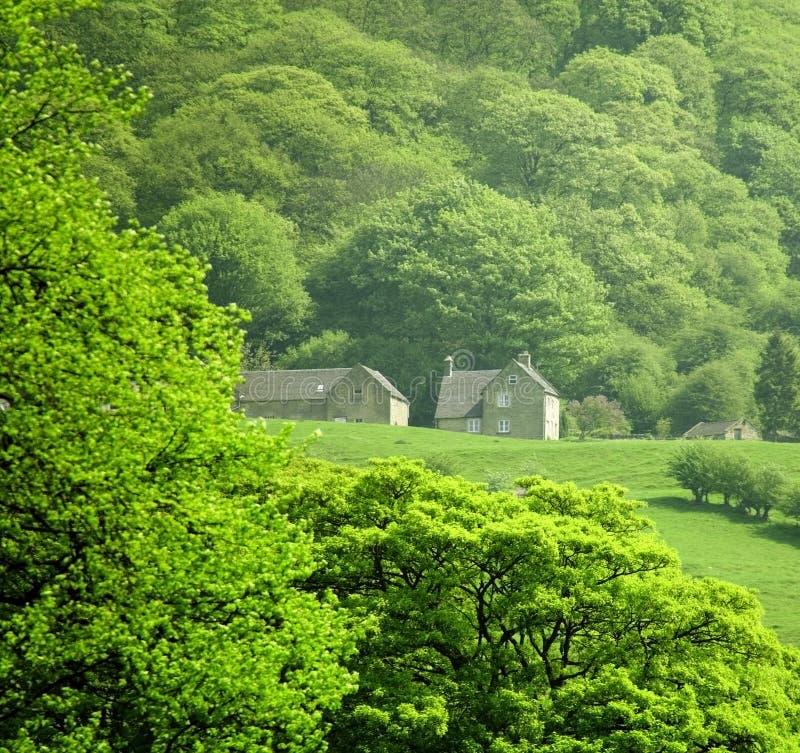 Piek het districts nationaal park Matlock van Engeland Derbyshire royalty-vrije stock afbeelding