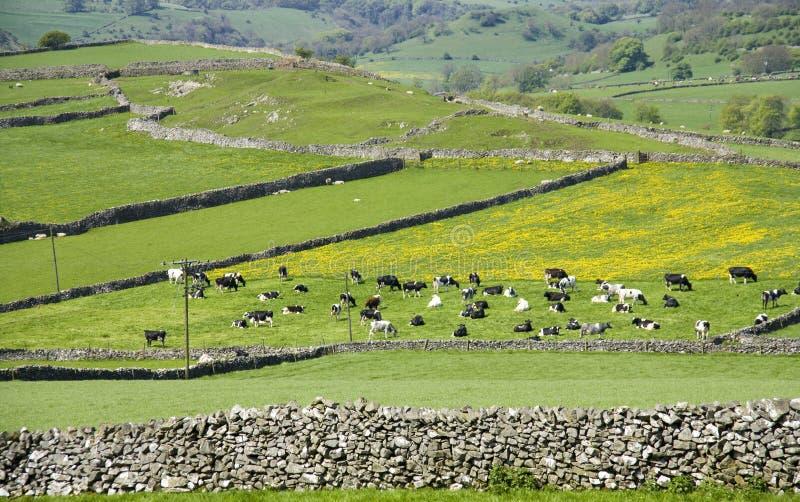 Piek het districts nationaal park van Engeland Derbyshire stock foto's