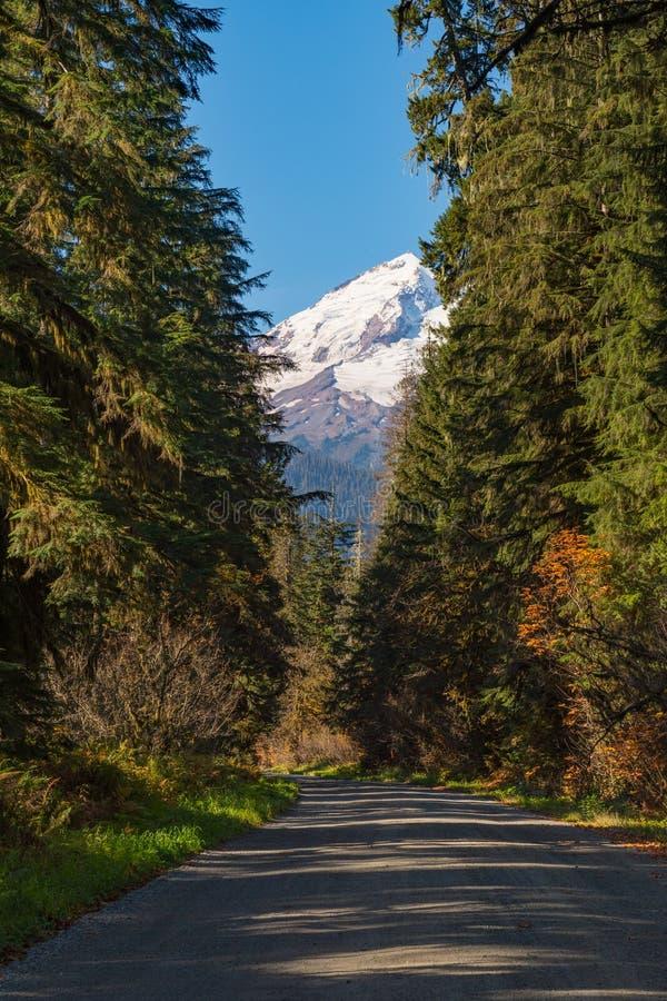 Piekarniana Jeziorna droga, otaczająca drzewami i nakrywającą Piekarnianą górą w tle przy Północnymi kaskadami zdjęcia stock