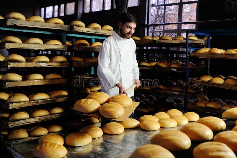 Piekarzów ciągnienia z piekarnika świeżego chleba obrazy stock