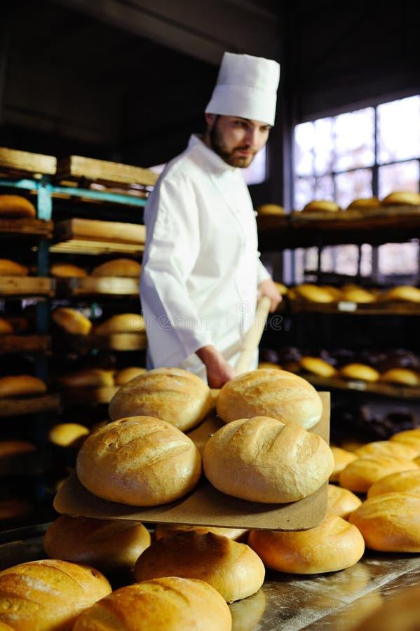 Piekarzów ciągnienia z piekarnika świeżego chleba fotografia stock