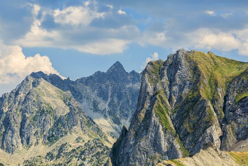Pieken in de Bergen van de Pyreneeën royalty-vrije stock fotografie