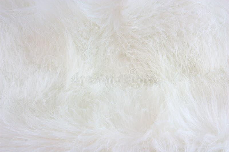Piel blanca imagenes de archivo