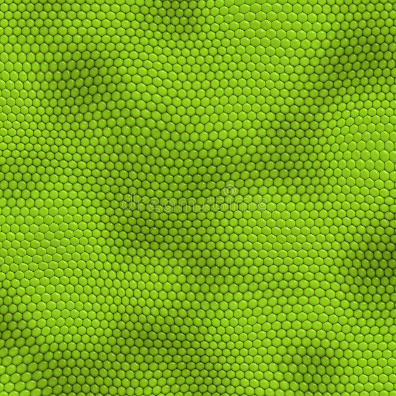 Piel de la iguana ilustración del vector