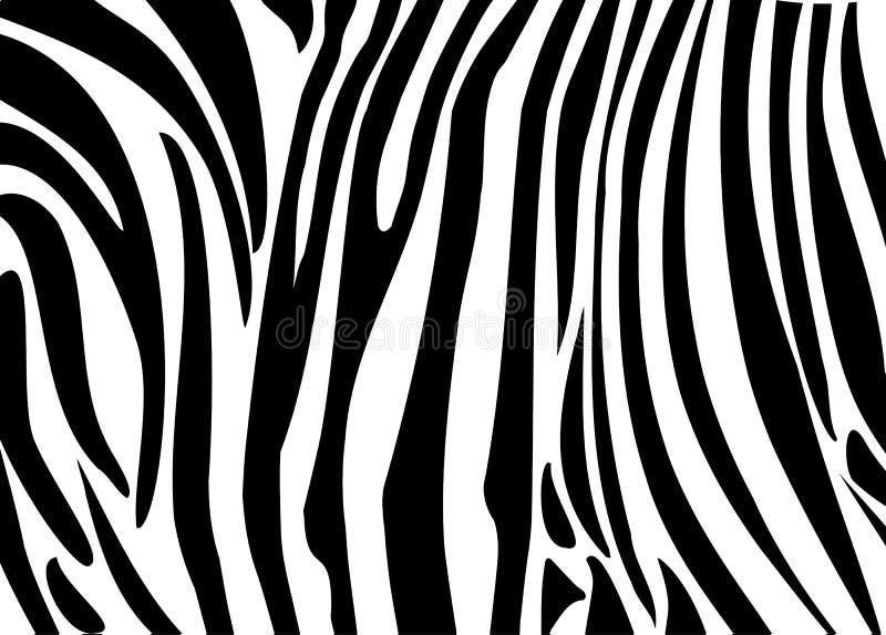 Piel de las rayas negras de la cebra stock de ilustración