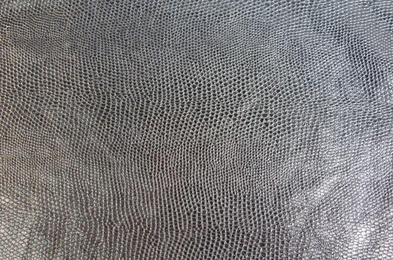 Piel de serpiente negra fotografía de archivo libre de regalías