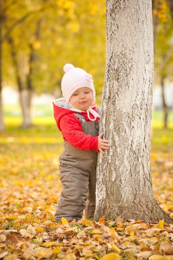 Piel linda joven del bebé detrás del árbol en parque del otoño imagen de archivo libre de regalías