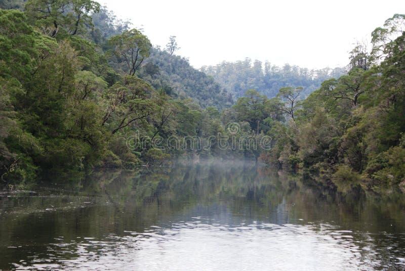 Pieman flod arkivbild