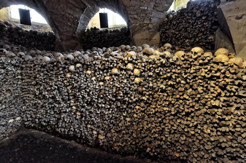 A piena vista dell'accatastato di su delle ossa e dello scheletro fotografia stock libera da diritti