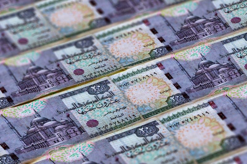Pieniądze Egipt Egipskiego funta tło 20 funt?w fotografia stock