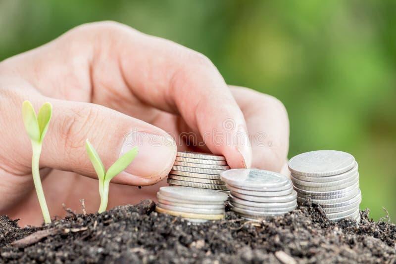 Pieniądze i roślina z ręką fotografia royalty free