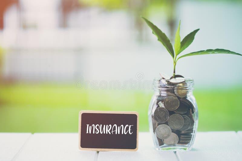 Pieniądze inwestyci i oszczędzania pieniężny pojęcie Rośliny dorośnięcie w savings monetach z teksta ubezpieczeniem na małym bill fotografia stock