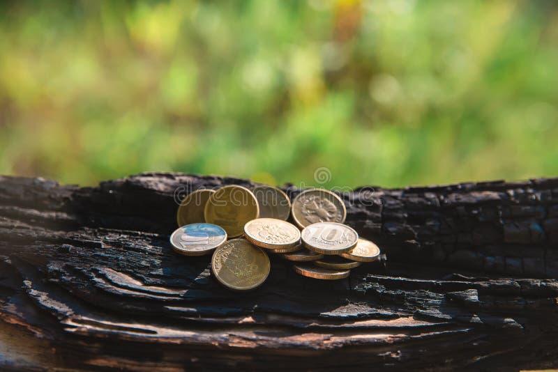 Pieniądze ukuwa nazwę ruble kłama na palącym drzewie zdjęcie royalty free