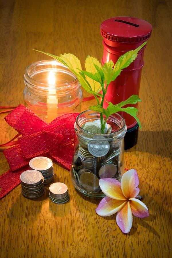 Pieniądze w szklanej butelki i rośliny dorośnięciu na monetach zdjęcia royalty free