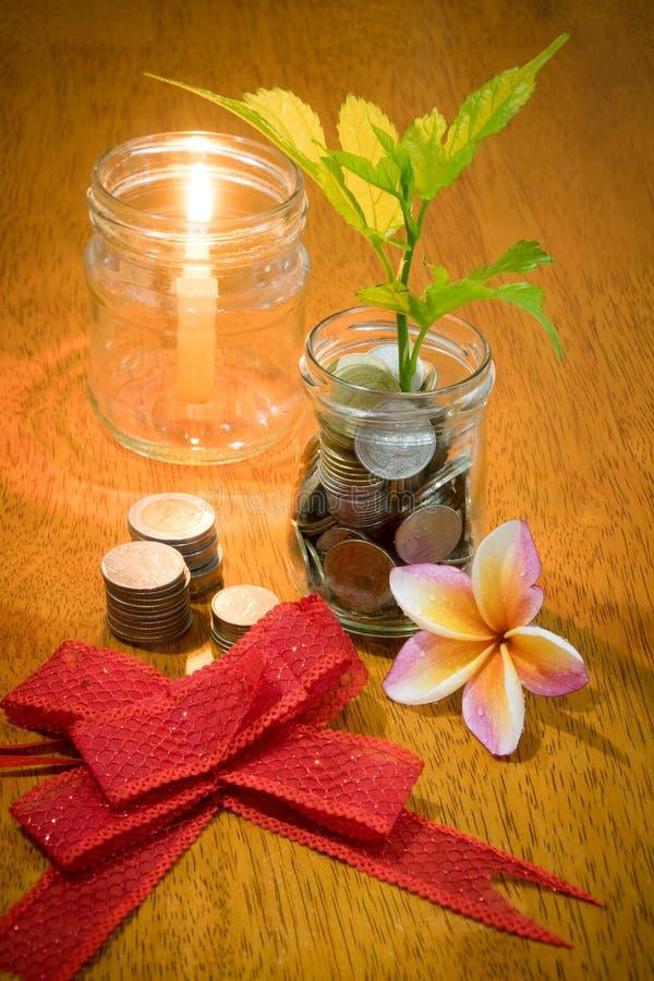 Pieniądze w szklanej butelki i rośliny dorośnięciu na monetach zdjęcie stock
